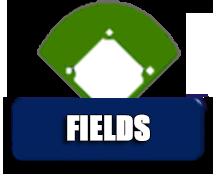 n-fields